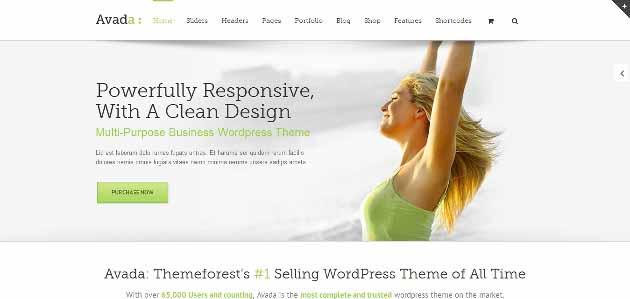 Avada_Premium_WordPress_Theme_2014-04-29_23-03-46 (630x299)