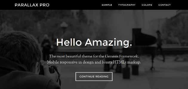 The Best Premium WordPress Themes for 2018 - WpThemesChecker