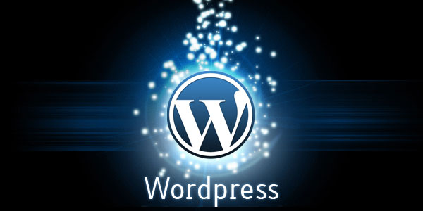 best premium wordpress themes 2014