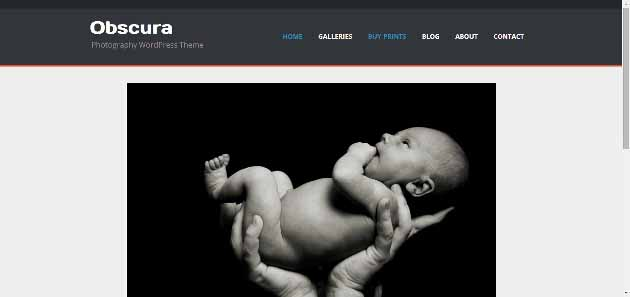 Obscura   Photography WordPress Theme (630x297)