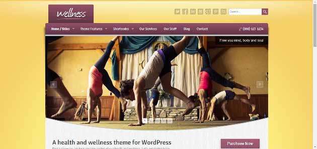 Wellness   A health and wellness WordPress theme (630x297)