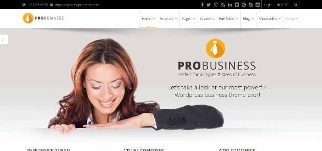 Pro_Business_Home_-_Pro_Busine2014-06-22_00-45-11 (630x296)