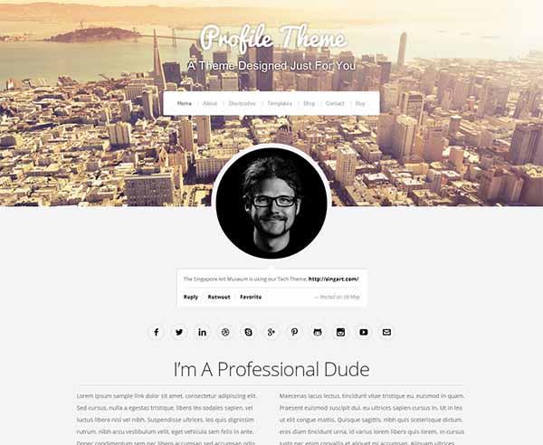 portfolio-profile