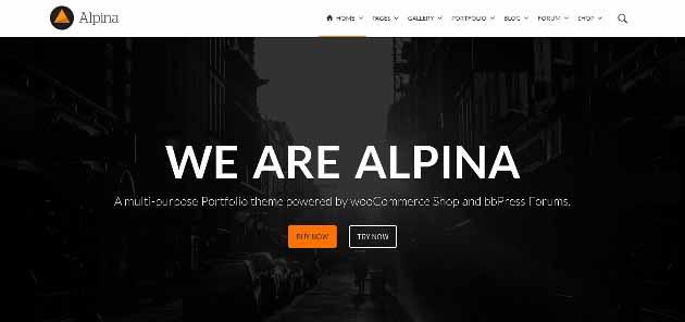 Alpina_2014-07-21_11-24-07 (630x296)