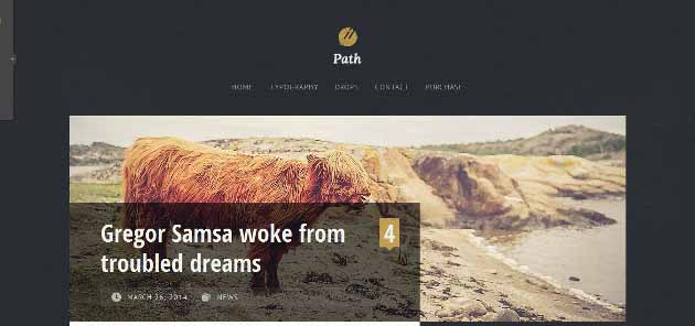 Path_2014-07-26_15-46-21 (630x296)