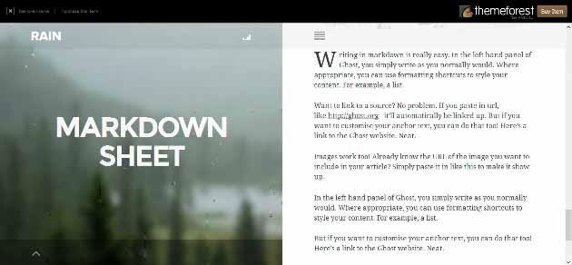 RAIN_-_Responsive_WordPress_Th2014-07-24_23-48-17 (630x292)