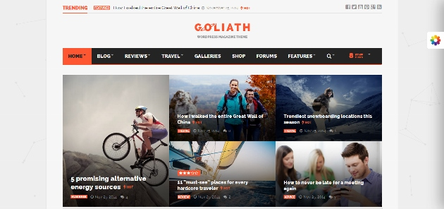 Goliath_Responsive_Magazine_2015-01-02_17-55-50 (630x296)