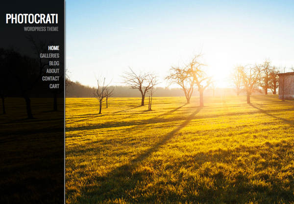 Photocrati wp photography theme and framework