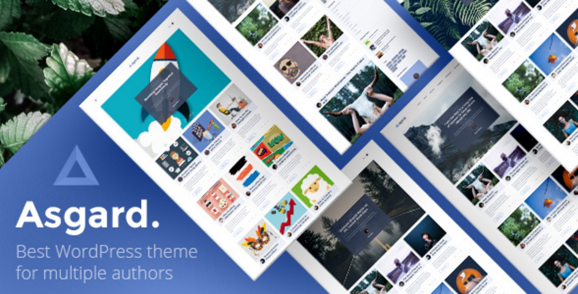 The Best Premium WordPress Themes for 2019 - WpThemesChecker